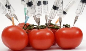 Ubice čovječanstva - opasnosti GMO hrane