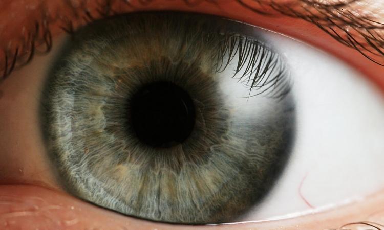 Liječenje vida na prirodan način, dr Šnaider