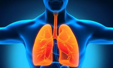 Liječenje astme, zapaljenja i raka pluća na prirodan način, Nikola Marković