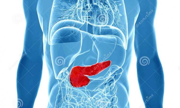 Liječenje jetre i pankreasa na prirodan način, Nikola Marković