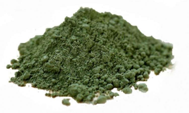 Najbolji način za opskrbljivanje organizma nutrijentima Zeleno_1