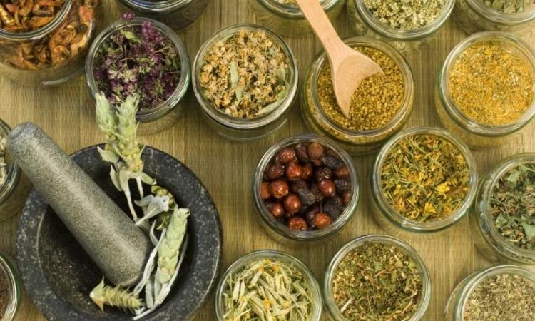 Kako da u svom domu pravite najbolje ljekovite preparate
