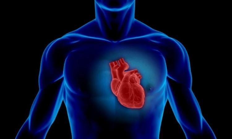 Liječenje srčanih bolesti, dr Šulc