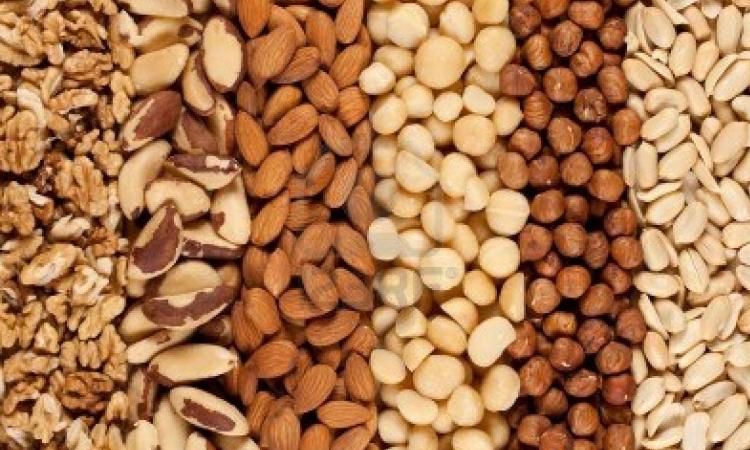 Istina i zablude o proteinima