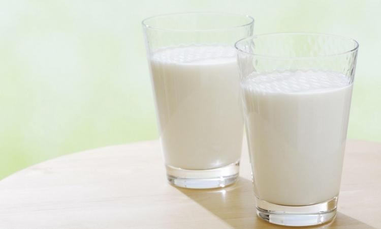 Zašto mlijeko treba izbjegavati
