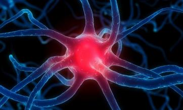 Liječenje multiplskleroze na prirodan način, Nikola Marković