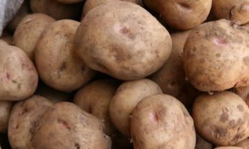 Cijeđeni sok od krompira - zdraviji nego što se misli