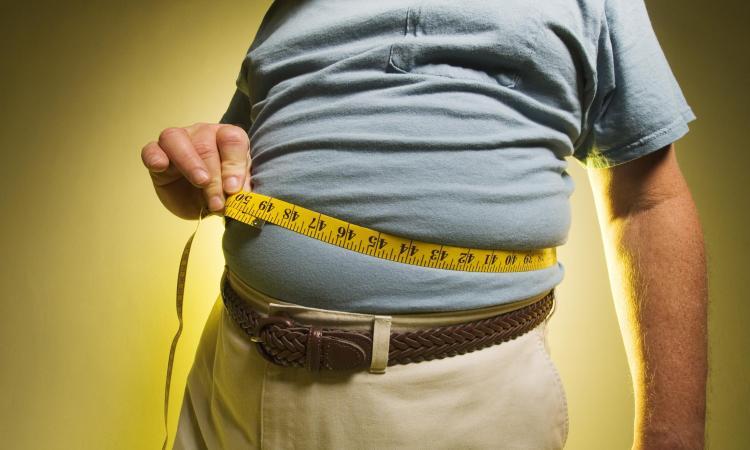Savjeti za uspješno i zdravo smanjenje tjelesne težine, Zdravko Vučinić
