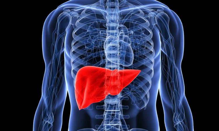 Zašto je važno pročišćavanje jetre