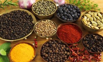 Značaj i uloga ljekovitih biljaka u prirodnom liječenju, Nikola Marković