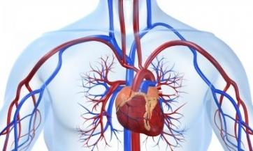 Pobijedite srčane probleme