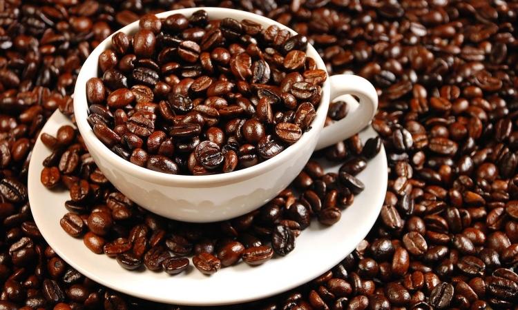 Kafa više nego štetna